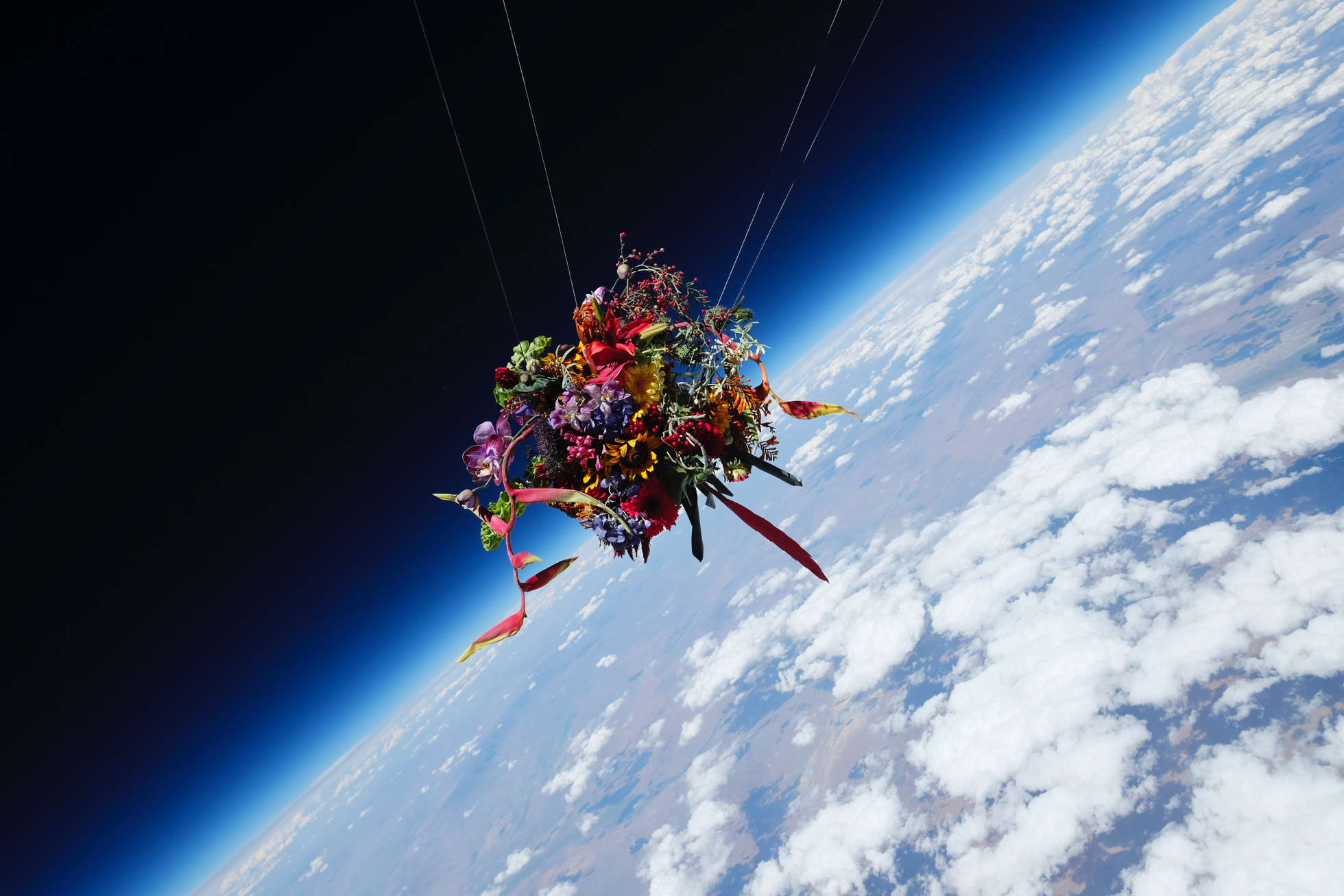 Colourful flowers float through space above Nevada