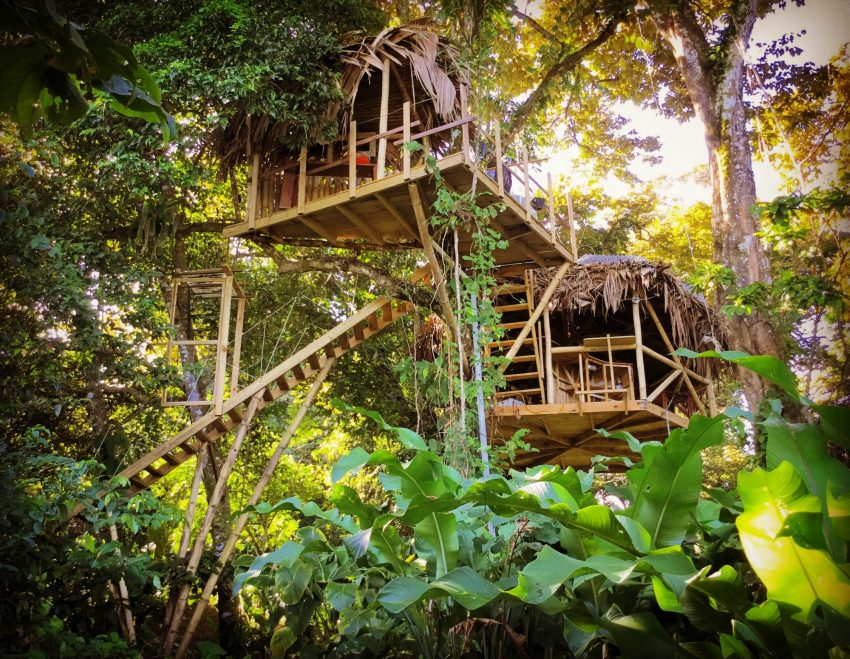 See The Pictures Of An Incredible Treehouse You Can Rent