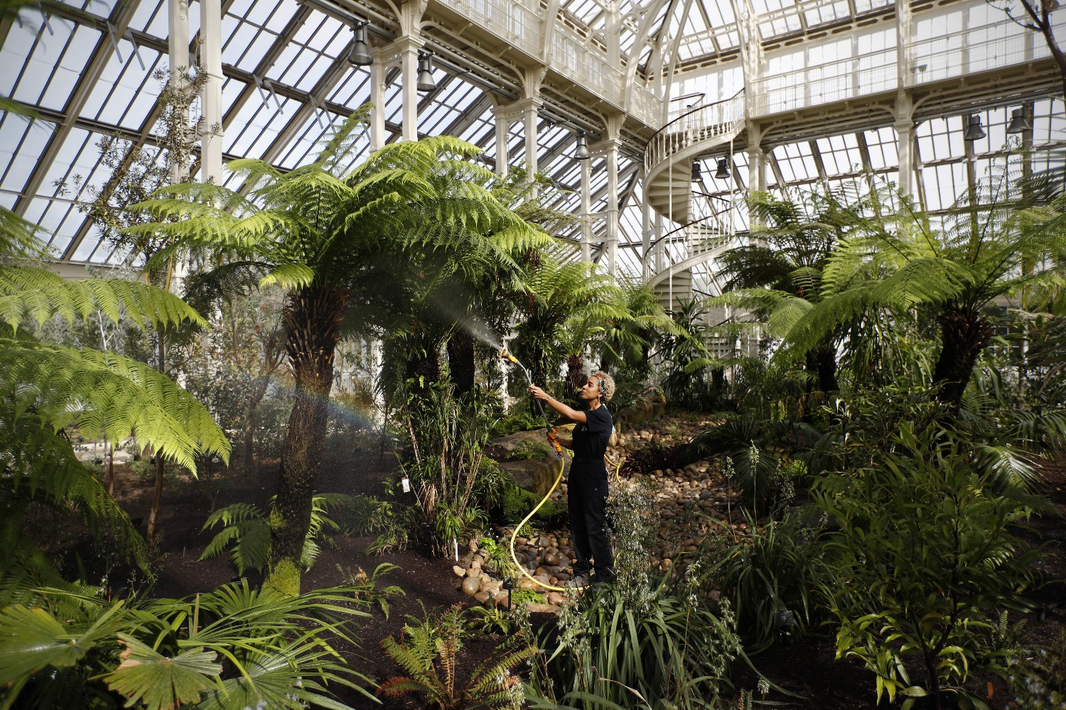 Astonishing The Worlds Largest Victorian Greenhouse Has Reopened In Interior Design Ideas Gresisoteloinfo