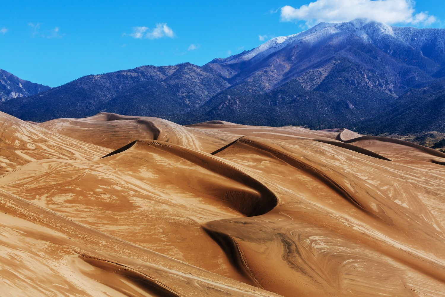 The dunes in Great Sand Dunes National Park in Colorado.