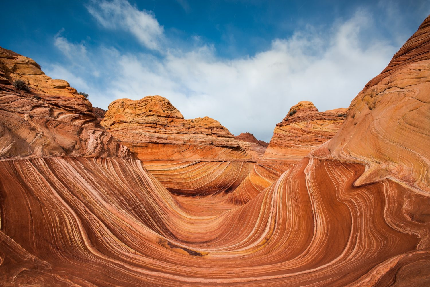 The Wave is a colourful sandstone rock formation in Arizona