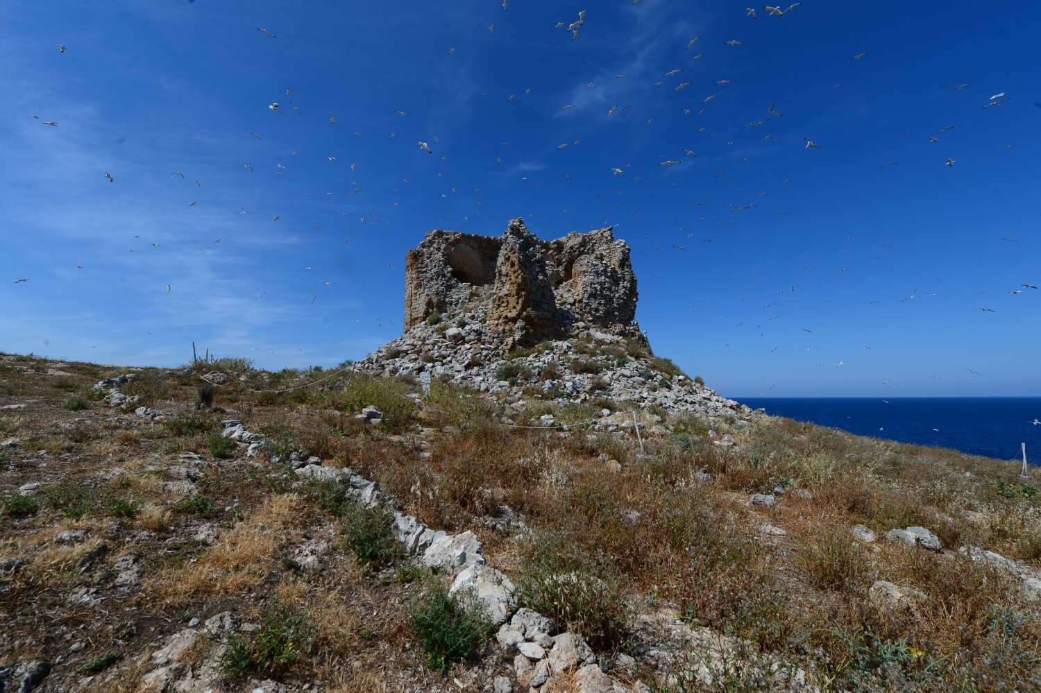 The tower on the Sicilian island of Isola delle Femmine